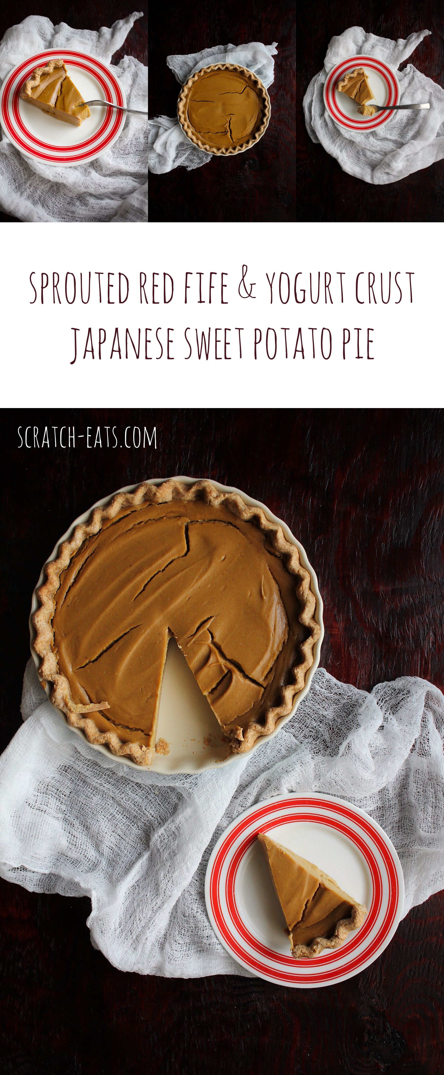 Sprouted Red Fife & Yogurt Crust Japanese Sweet Potato Pie